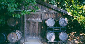 Une cabane de ajrdin avec des tonneaux